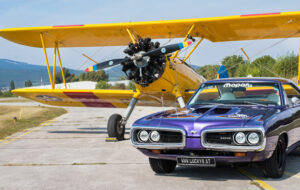 WILD TOM'S SUPER BEE